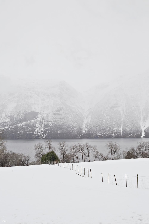 Norway-winter-white-landscape-Studio-Metsa-Photography